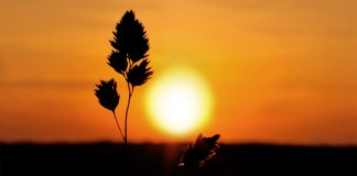 Wednesday motivational quotes: Sunset sunrise landscapes nature. Photo source: Wallpaperhi