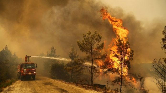 July world's hottest month ever - US agency