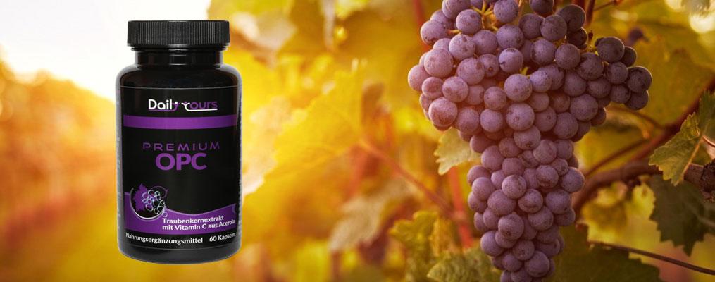 Hochdosiertes Premium OPC mit Vitamin C aus Acerola
