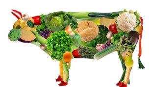 Foto voedingstekorten als gevolg van zichzelf