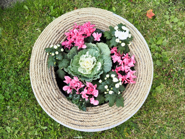 DIY tyre planter