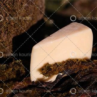 photo τυρί Κασέρι P-10037 αγορά φωτογραφία τυρί κασέρι on line