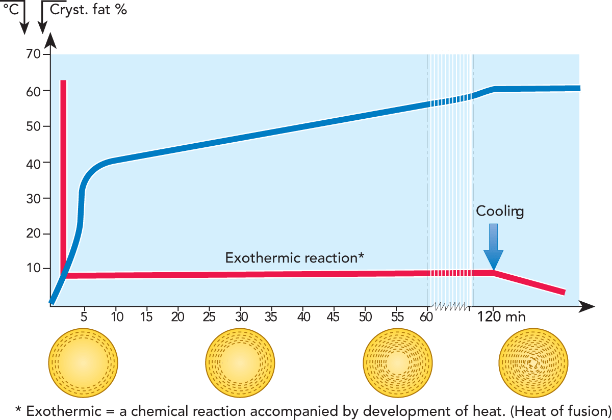 hight resolution of fig 2 22milk fat crystallization is an exothermic reaction which means that the chemical reaction is accompanied by evolution of heat