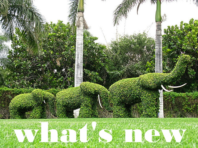elephant garden text