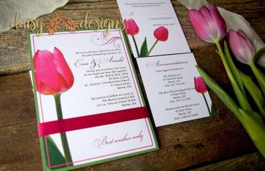 Red Tulip suite