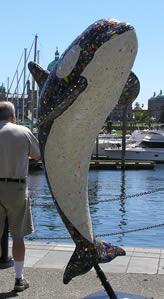 mirror-whale