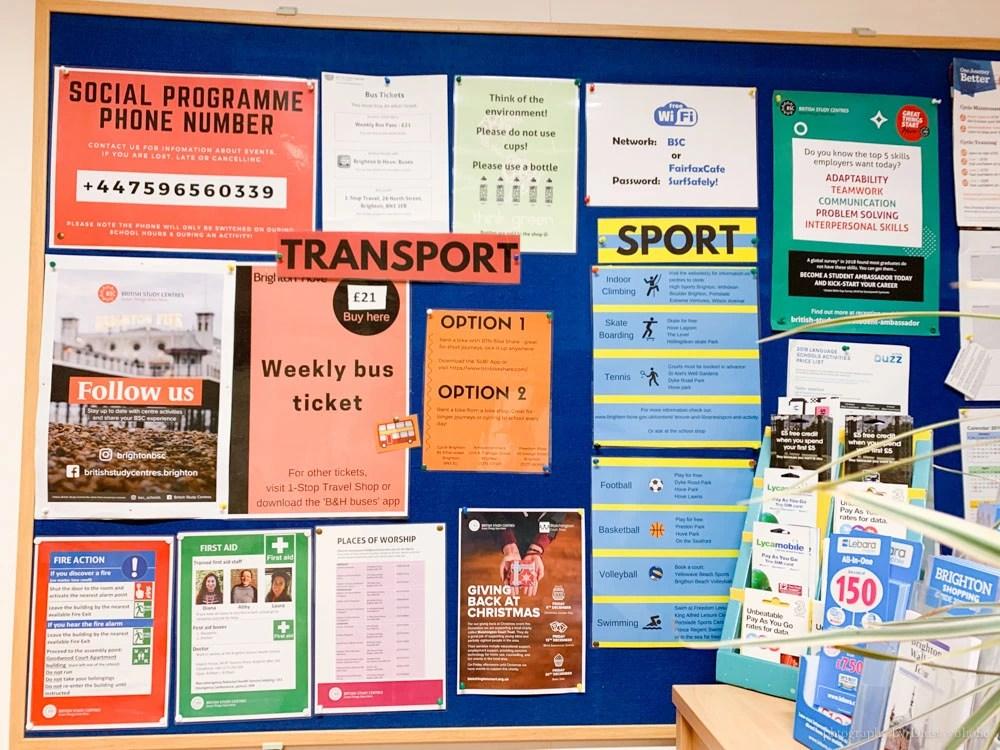 布萊頓遊學, British Study Centre, Brighton 語言學校, Brighton 遊學, StudyDIY, 英國遊學, Brighton語言學校