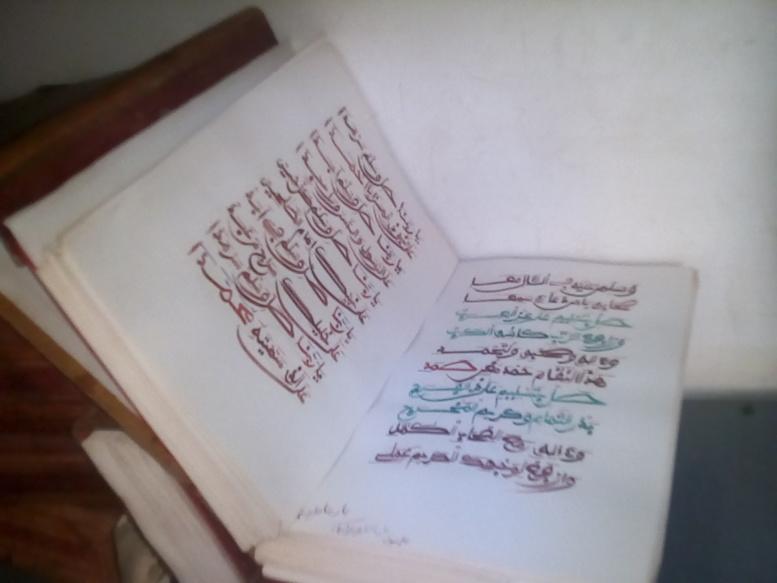 darraay kamil2