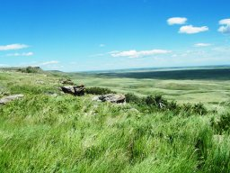 View from Head Smashed in Buffalo Jump