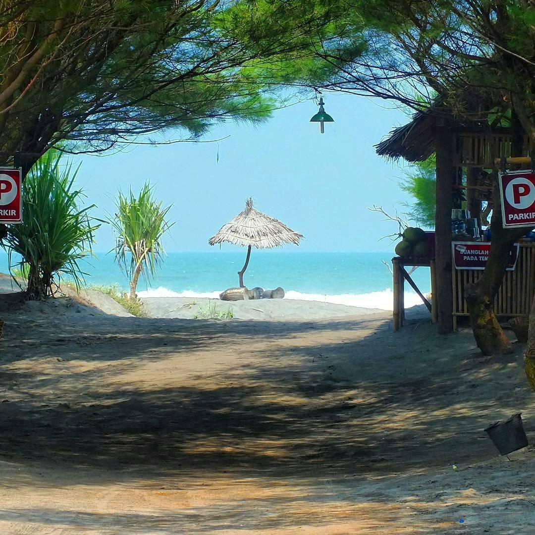 Lokasi dan Rute Menuju Pantai Cemara Sewu Bantul Jogja