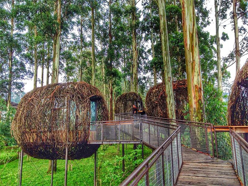 Hasil gambar untuk gambar dusun bambu lembang bandung
