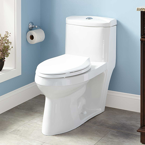 toilet category image