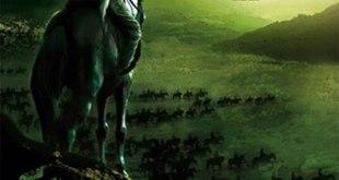 """Cover buku """"Abu Bakar Ash Shiddiq The Successor""""."""