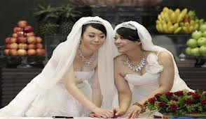 Pernikahan Sejenis (Ilustrasi)