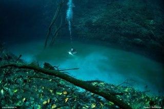 Ilustrasi - Penemuan air tawar di bawah air laut yang asin. (tecdive.ru / Anatoly Beloshchin)