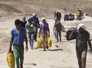 Pengungsi menyelamatkan diri dari kekejaman rejim Asad di Suriah (islammemo)