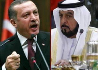 Erdogan dan dubes Emirat di Turki (fbcdn)