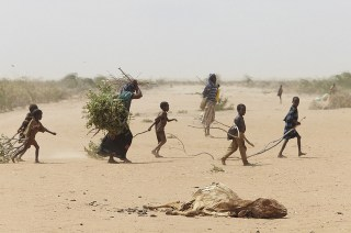 Kekeringan yang melanda Somalia (greenfudge.org)