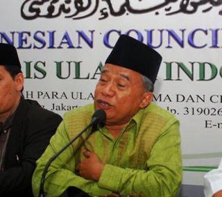 Ketua MUI Bidang Luar Negeri Muhyidin Junaidi.  (tempo.co)