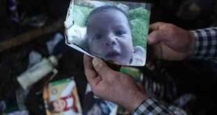 Bayi setahun, Ali Saad Dawabisyah, yang tewas terbakar (islammemo.cc)