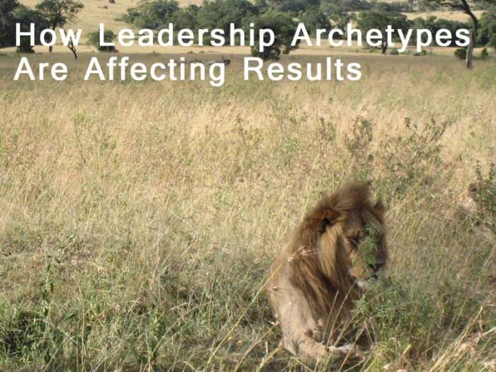 Leadership Archetypes