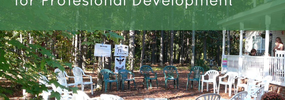 Mentoring Circles for Professional Development