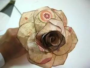 rosadepapel