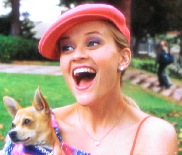 https://i0.wp.com/www.daleisphere.com/wp-content/uploads/legally-blonde-2001-reese-whitherspoon-holding-her-dog-bruiser.jpg