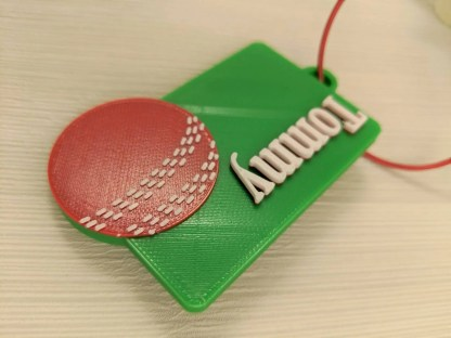 Cricket themed luggage tag in green