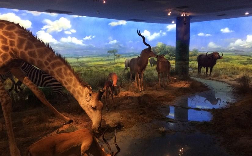Pics of Dalian: Natural History Museum