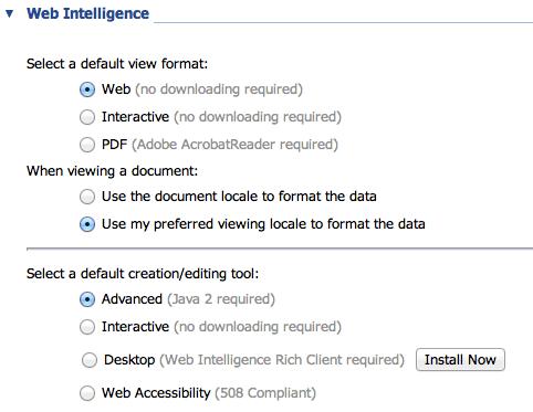 XI3 Web Intelligence View and Modify Options