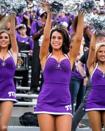 Dallas Sports Fanatic (21 of 28)