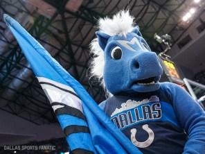 Dallas Sports Fanatic (5 of 24)