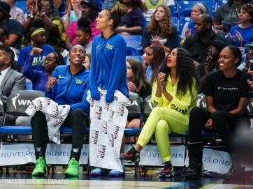 Dallas Sports Fanatic (22 of 28)