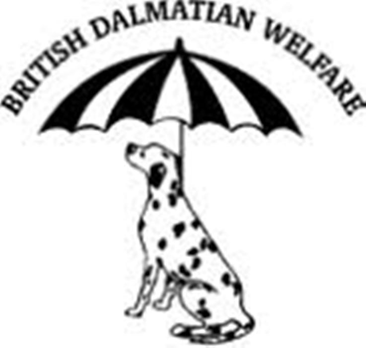 Dalmatian Welfare » Shop