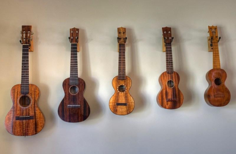 von li nach re: Tenor, Konzert, Mezzosopran, Sopran, Sopran; Quelle: Flickr, Philip Hay (CCBYNCND)