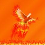 """""""Phoenix"""" v. Prairie Kittin (CCBYSA) by flickr"""