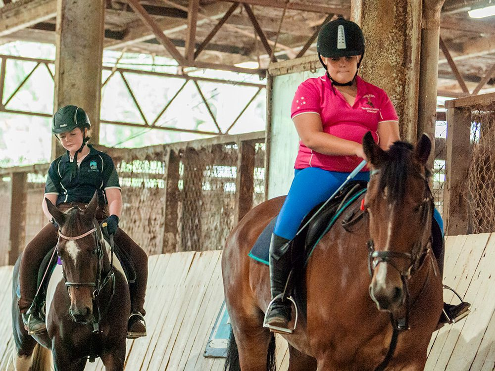 childrens horse riding lessons brisbane