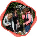 daltonschool_Het_Palet_Groep_7_bijen_excursie
