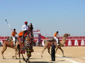 Festival del deserto