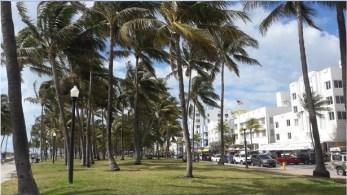 Miami_primo giorno 5