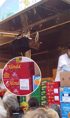 Obst Alinda