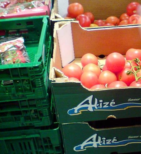 Tomate Alizé