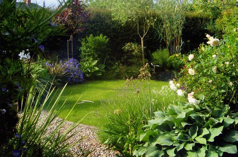 Suburban Garden Damian Costello Garden Design