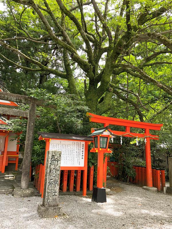 Kumano Kodo: Hayatama Taisha