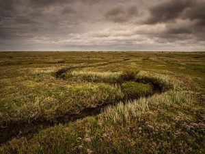 Salt Marsh Stiffkey, Norfolk. Landscape Photography