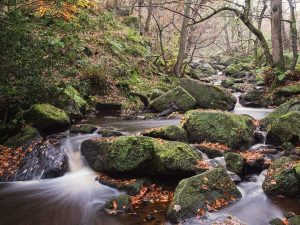 Padley Gorge Landscape Photography