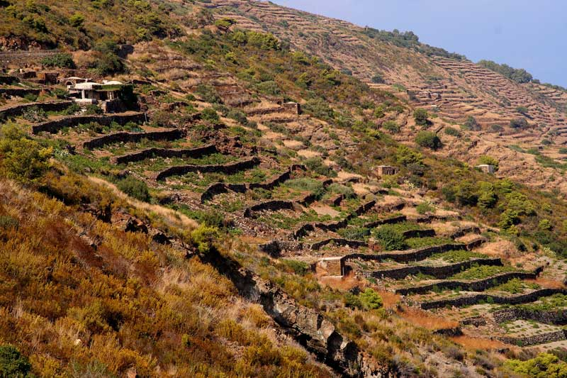 pantelleria  dammusopantelleria