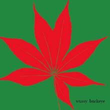 Buckeye – Wussy