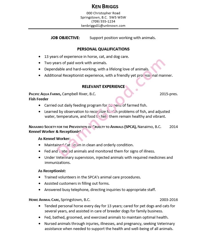 examples of kennel assistant resume no experience